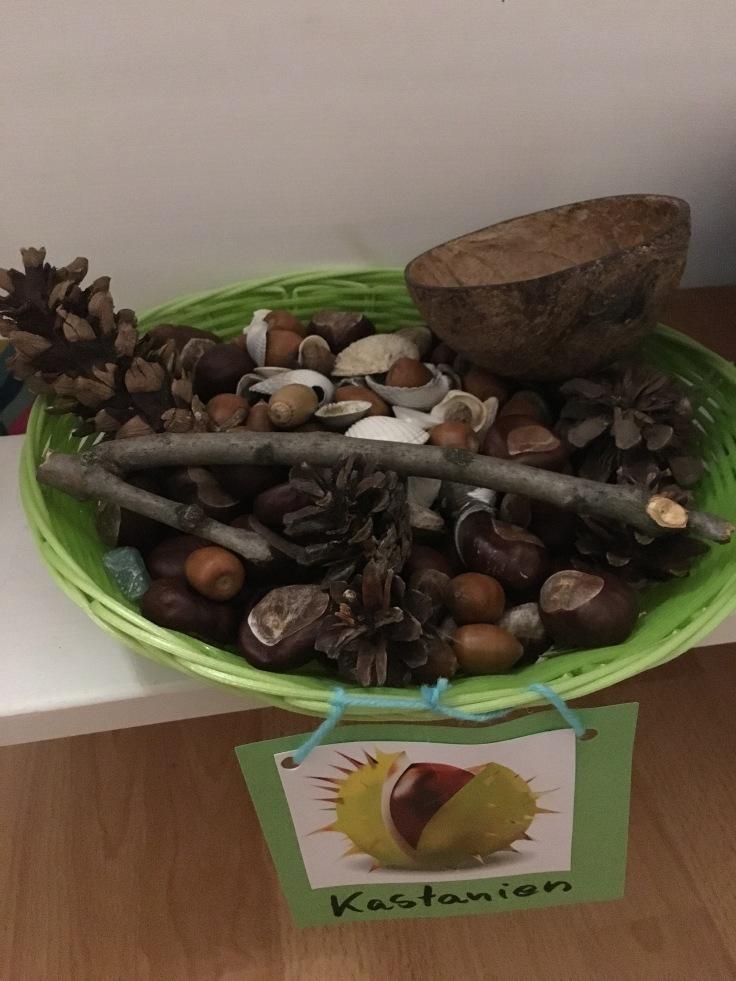 Natur im Kinderzimmer