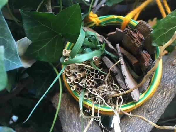 Insektenhotel in der Dose