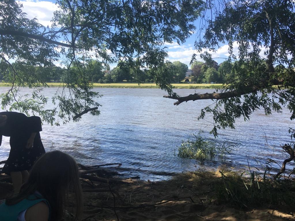 Sommer an der Elbe