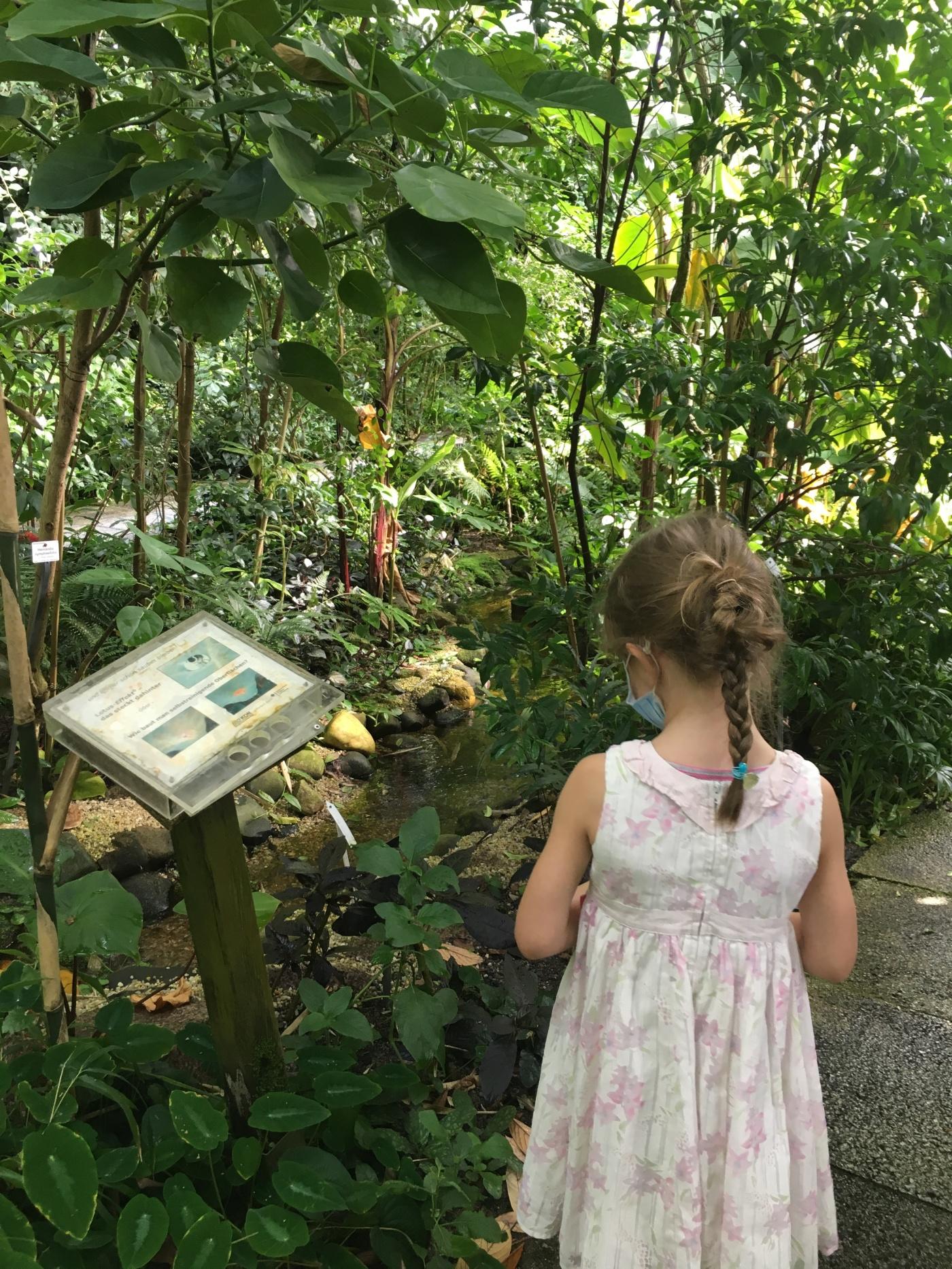 Kind im Botanischen Garten